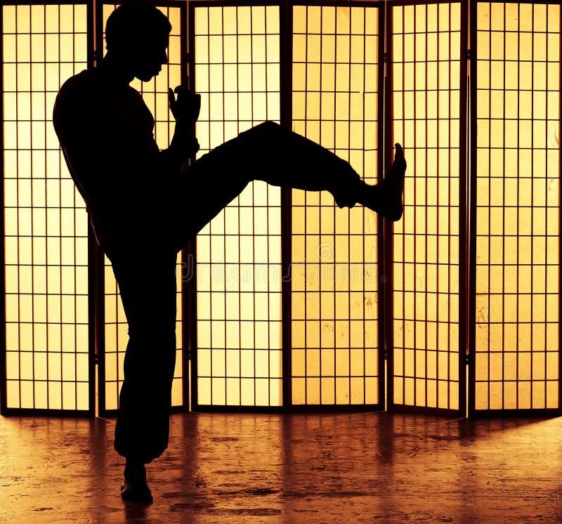 Kung fu kopnięcie fotografia stock