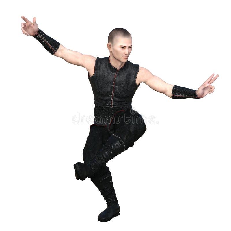 Kung fu mistrz zdjęcie stock