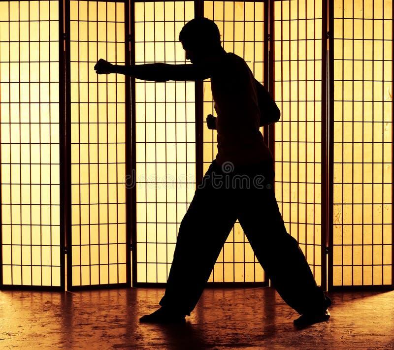 Kung fu poncz obrazy royalty free