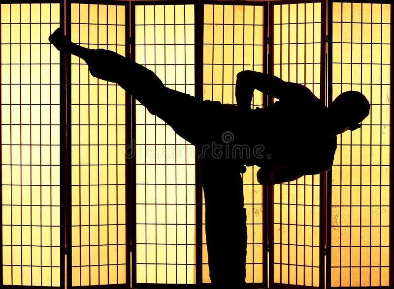 Kung fu Stoß lizenzfreies stockbild