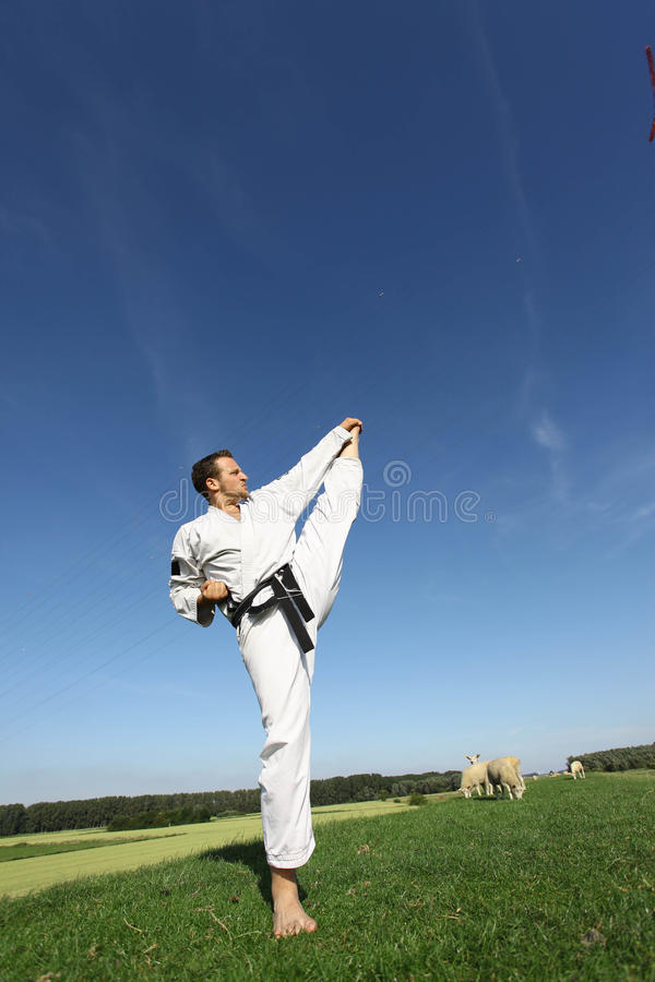 Kungfu foto de stock royalty free