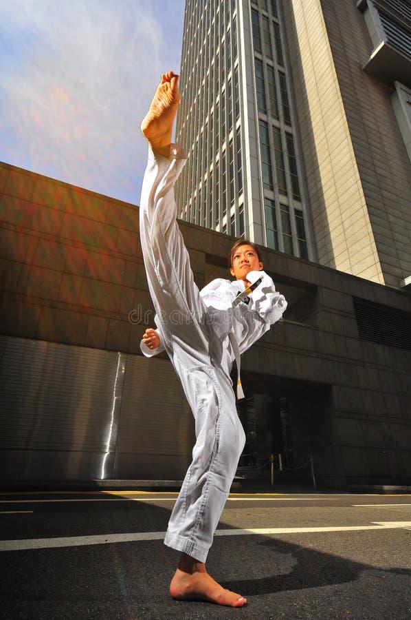 Kungfu royalty free stock image