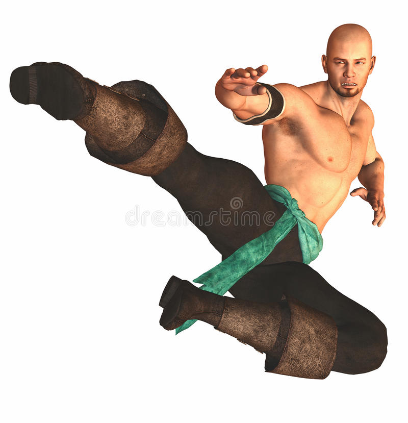 Kungfu Figher stock photos