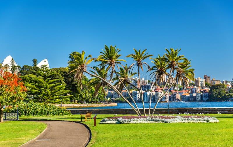 Kunglig botanisk trädgård av Sydney - Australien, New South Wales arkivfoton