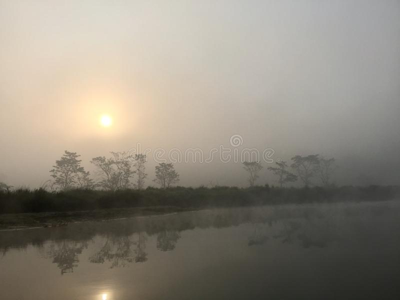 Kunglig Chitwan nationalpark - Nepal arkivfoto