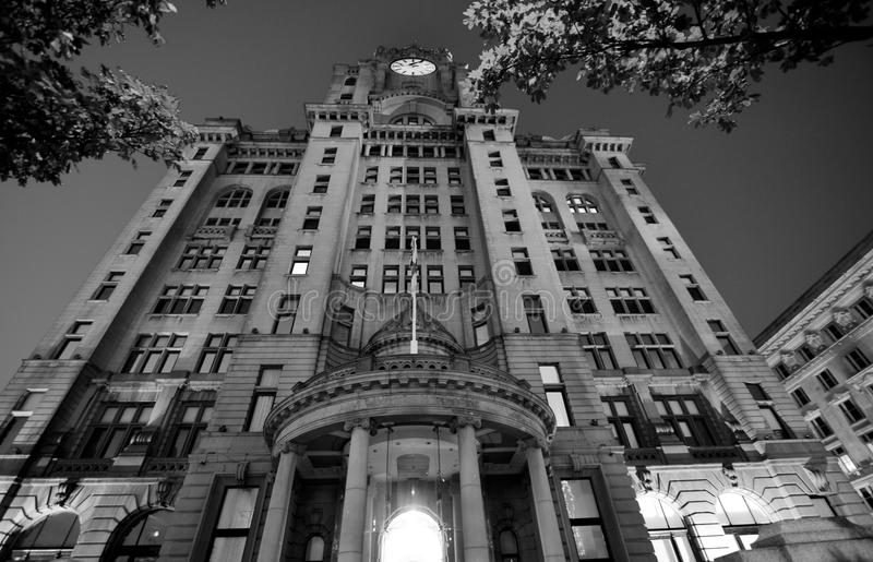 Kunglig leverbyggnad, Liverpool, UK royaltyfri fotografi