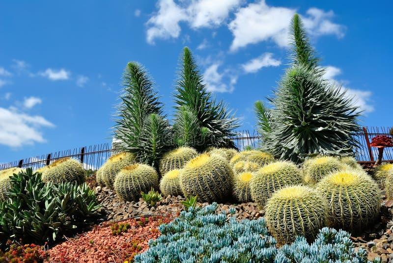 kungliga botanisk trädgård royaltyfria bilder