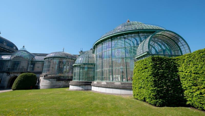 Kungliga v?xthus p? Laeken, Bryssel, Belgien som komponeras av ett komplex av ett antal v?xthus royaltyfria bilder