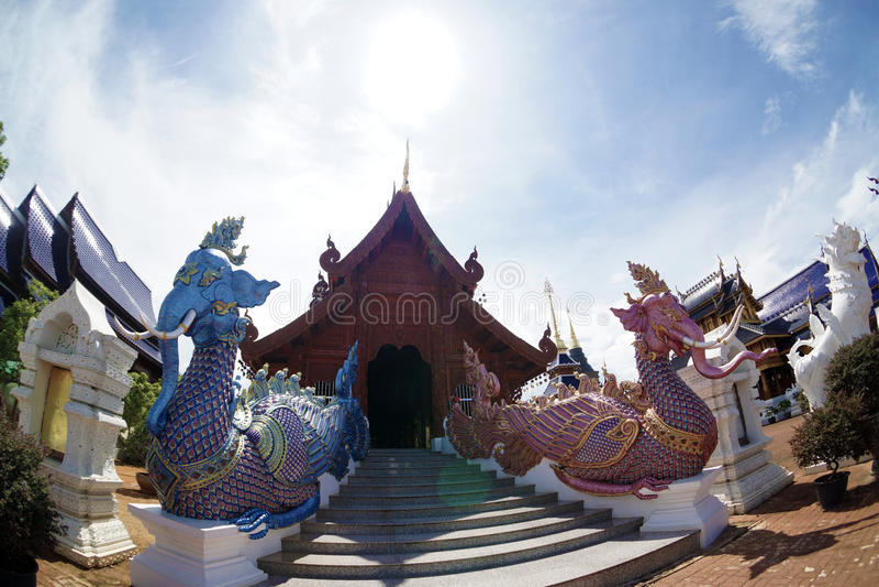 Kungligt floratempel (ratchaphreuk) i Chiang Mai, Thailand arkivfoton