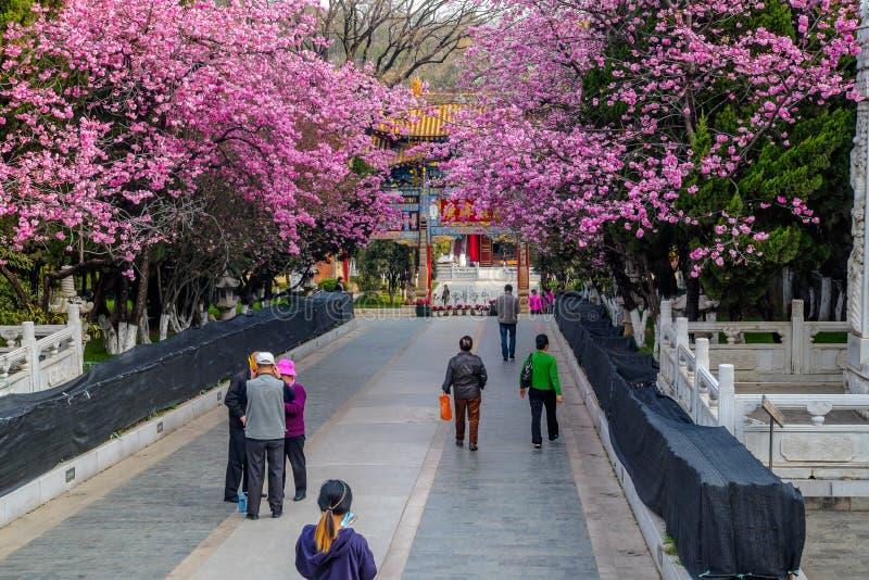 KUNMING 13 DE MARZO DE 2016 Los viajeros en el templo budista de Yuantong, templo budista de Yuantong son el templo budista más f foto de archivo libre de regalías