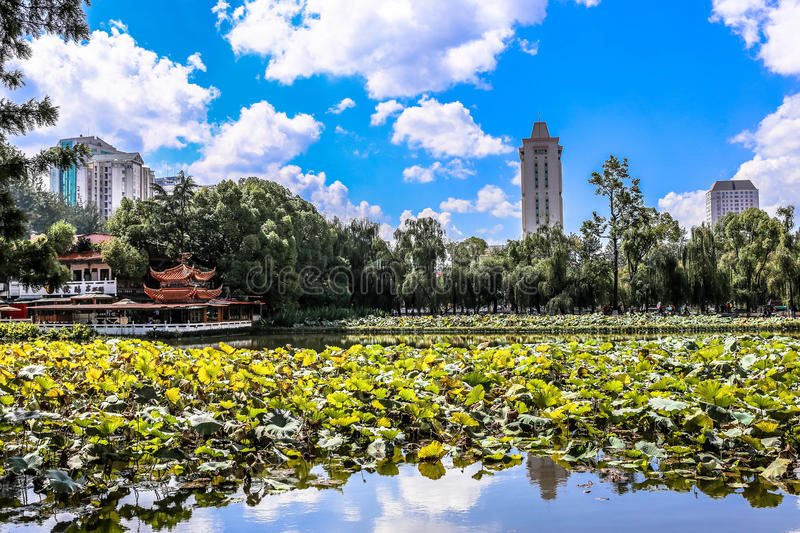 Kunming's Green Lake. The famous green lake in Kunming, China stock photos