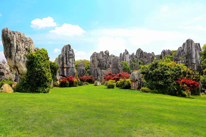 Kunming Stone Forest Scenic Area. Is a world natural heritage and a world geological park. Stone forest was formed 270 million years ago. It is the quintessence royalty free stock photography