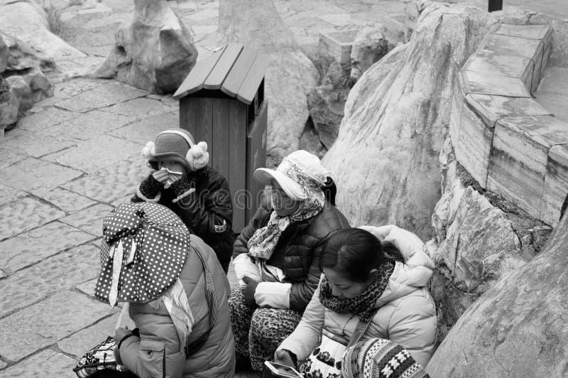 Kunming, Yunnan, China - 31 de dezembro de 2017: Um grupo de guia chinês do turista na floresta de pedra imagens de stock