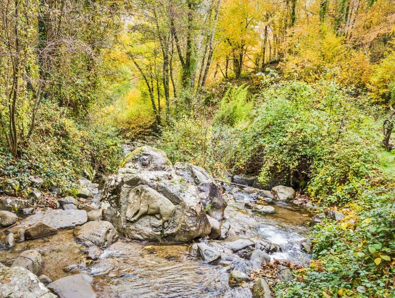 Kunst in de steen van de rivier wordt gesneden die stock foto