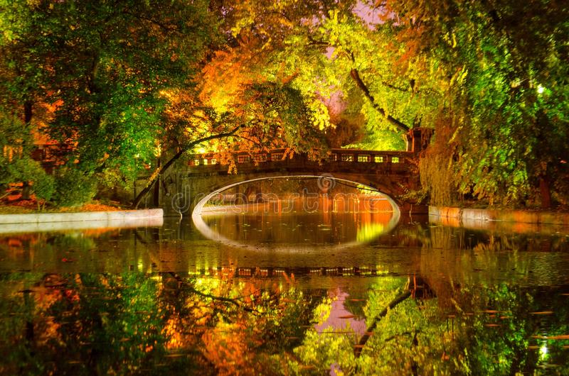 Kunst des Herbstes lizenzfreies stockbild