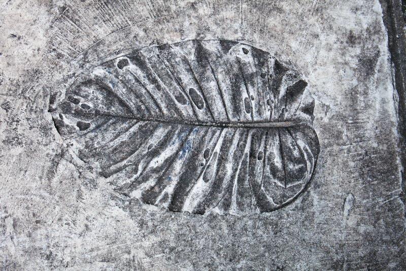 Kunst en blad de drukken op de cementvloer in de tuin tonen stock foto