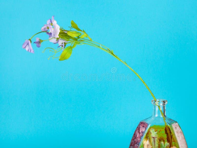 Kunstbloem in handbeschilderd flesje op blauw royalty-vrije stock afbeelding