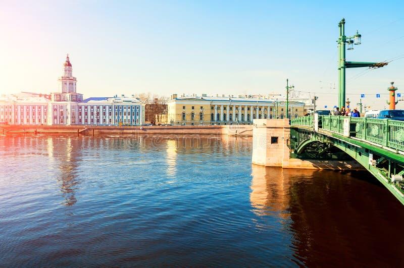 Kunstkamera大厦、动物学博物馆和宫殿桥梁在内娃河在圣彼德堡,俄罗斯 免版税库存图片