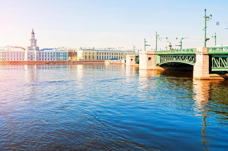 Kunstkamera大厦、动物学博物馆和宫殿桥梁在内娃河在圣彼德堡,俄罗斯-春天都市风景 免版税图库摄影