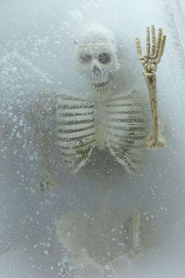 Kunstkonzept Tod auf Eis, Skelett im Eis lizenzfreie stockfotos