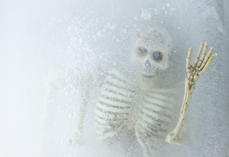 Kunstkonzept Tod auf Eis, Skelett im Eis lizenzfreie stockbilder