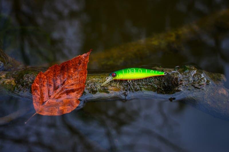 Kunstmatig aas voor vissen en een blad op een winkelhaak in het water royalty-vrije stock fotografie