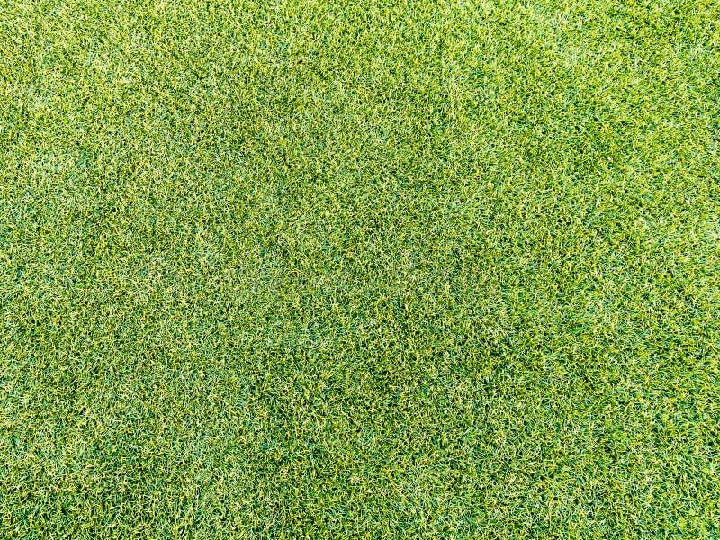 Kunstmatig Gras stock foto's