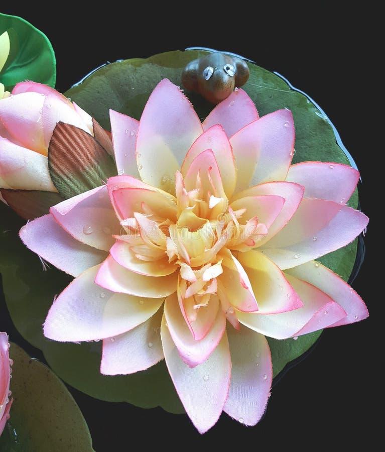 Kunstmatig Lotus en de Kikker stock afbeeldingen