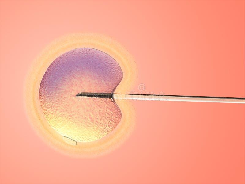 Kunstmatige inseminatie stock illustratie