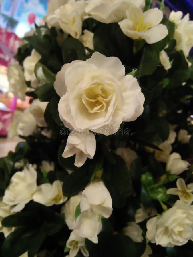 Kunstmatige rozen die prachtig bloeien en heel wat liefde oogsten stock afbeelding