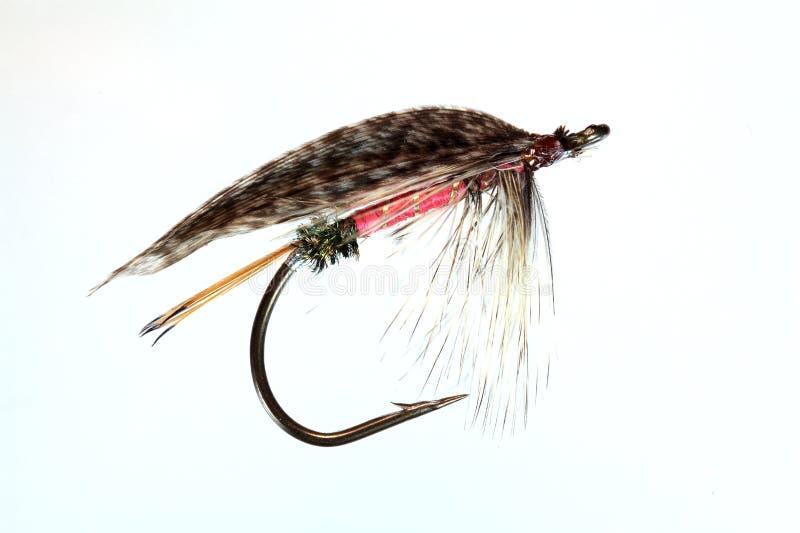Download Kunstmatige Vlieg Voor Vlieg Visserij Stock Afbeelding - Afbeelding bestaande uit dier, aansporing: 54090325