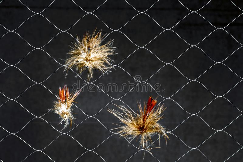 Kunstmatige vliegen in synthetisch Web op donkere achtergrond Het concept gelijkenis van echt insect visserijlokmiddel stock foto's