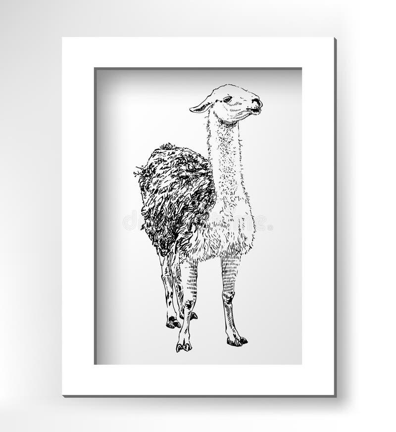 Kunstwerklama, digitale realistische schets van dierlijk, stock illustratie