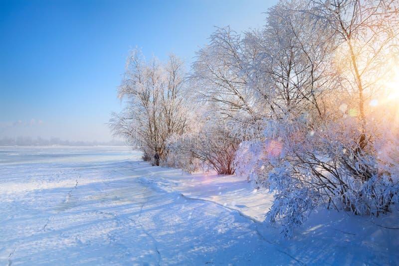 Kunstwinter Landschaft mit gefrorenem See und schneebedeckten Bäumen stockfotos