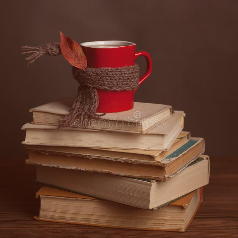 Kupa varmt kaffe eller te, kakao, den choklad coered halsduken och boken på trätabellen, tonat foto Höstbegreppsbunt av böcker, k fotografering för bildbyråer