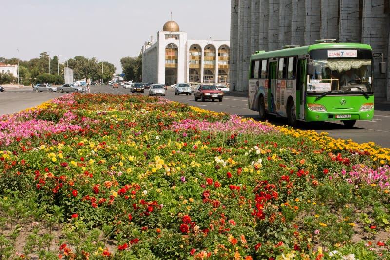 Kupczy na zielonym streeet z lokalnymi autobusami & samochodami fotografia royalty free