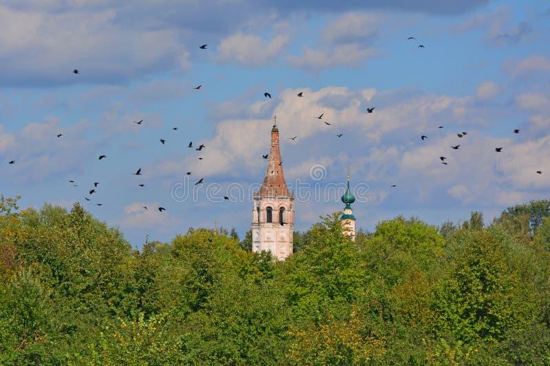 Kupol av Nicholas The Wonderworker & x27; s-kyrka i Suzdal, Ryssland royaltyfria foton
