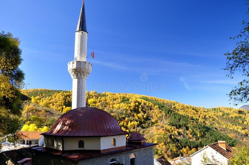 Kupolen av den nya moskén royaltyfria bilder