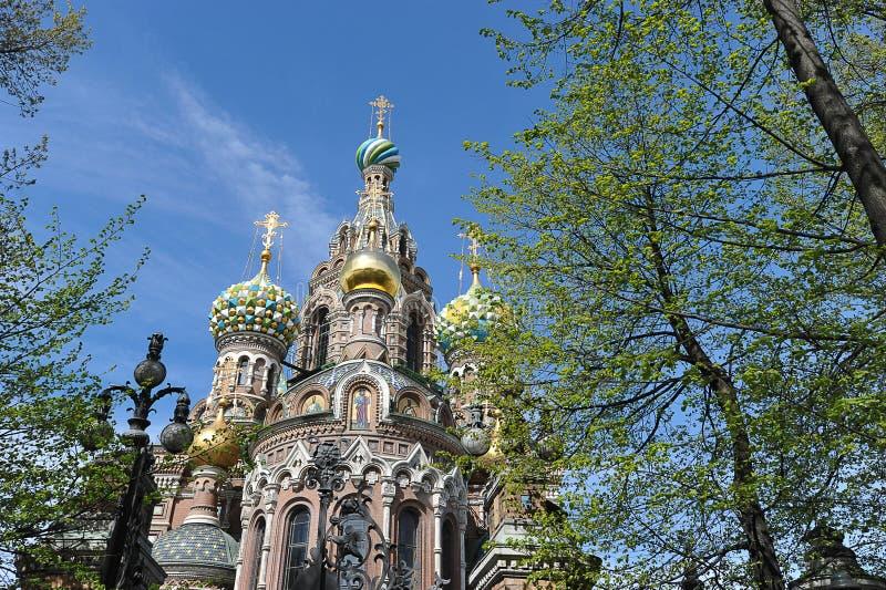 Kupoler av den ortodoxa kyrkan av frälsaren på blod royaltyfria foton