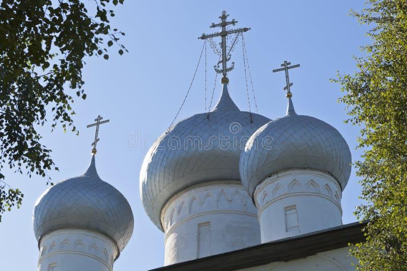 Kupoler av domkyrkan antagandet av den heliga oskulden i staden av Belozersk, Vologda region royaltyfri fotografi