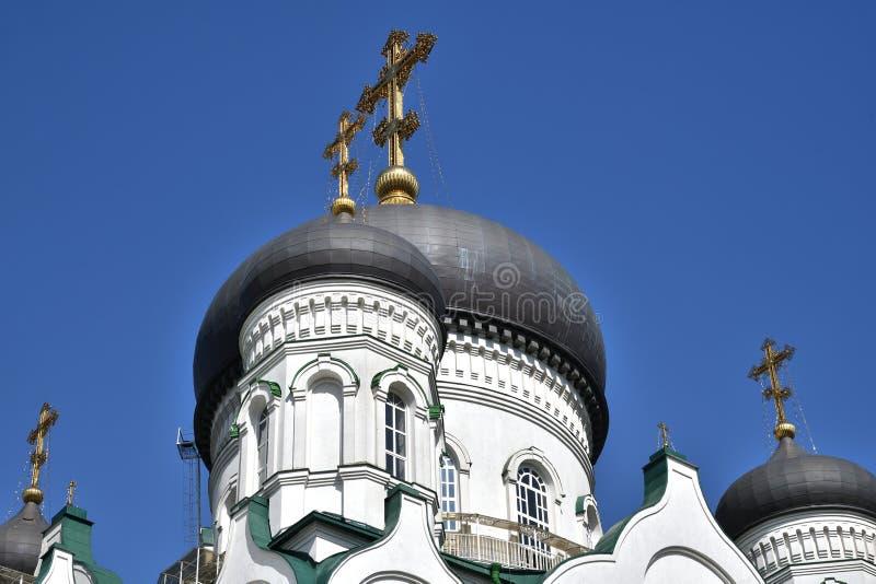 Kupoler av förklaringdomkyrkan på revolutionaveny i Voronezh, Ryssland royaltyfri fotografi