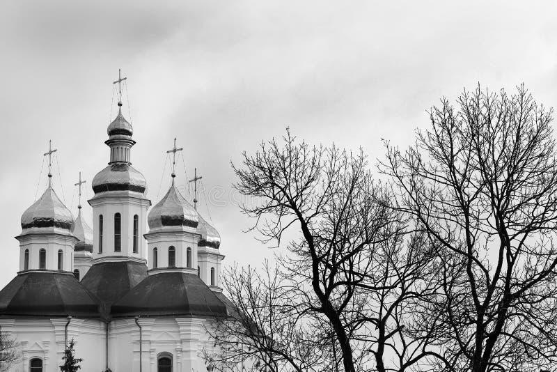 Kupoler av kyrkan Kyrka royaltyfri foto