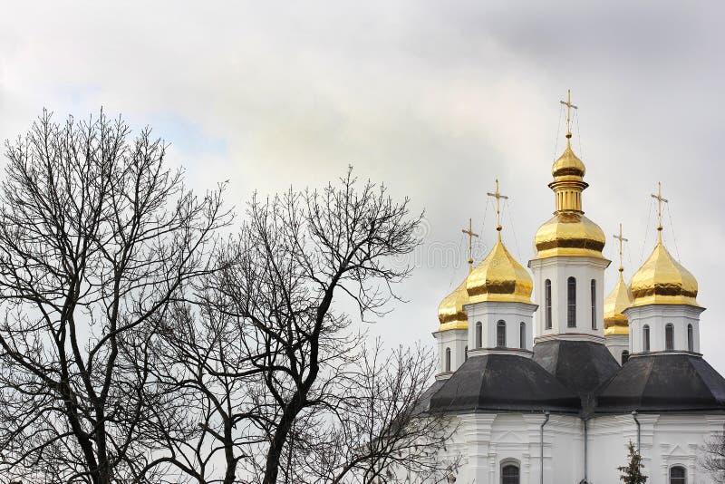 Kupoler av kyrkan Kyrka royaltyfria bilder
