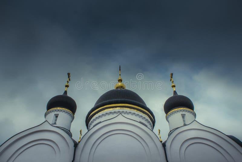 Kupoler för svart kyrka` s underifrån royaltyfri foto