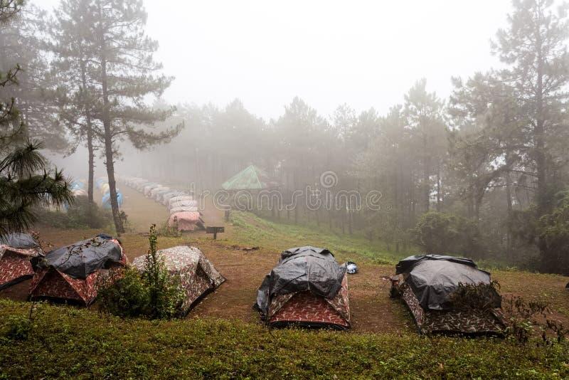 Kupoltält som campar i havet av mist på Thailand royaltyfria bilder