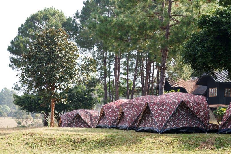 Kupoltält som campar på den Thung Salang Luang nationalparken Phetchabun arkivfoto