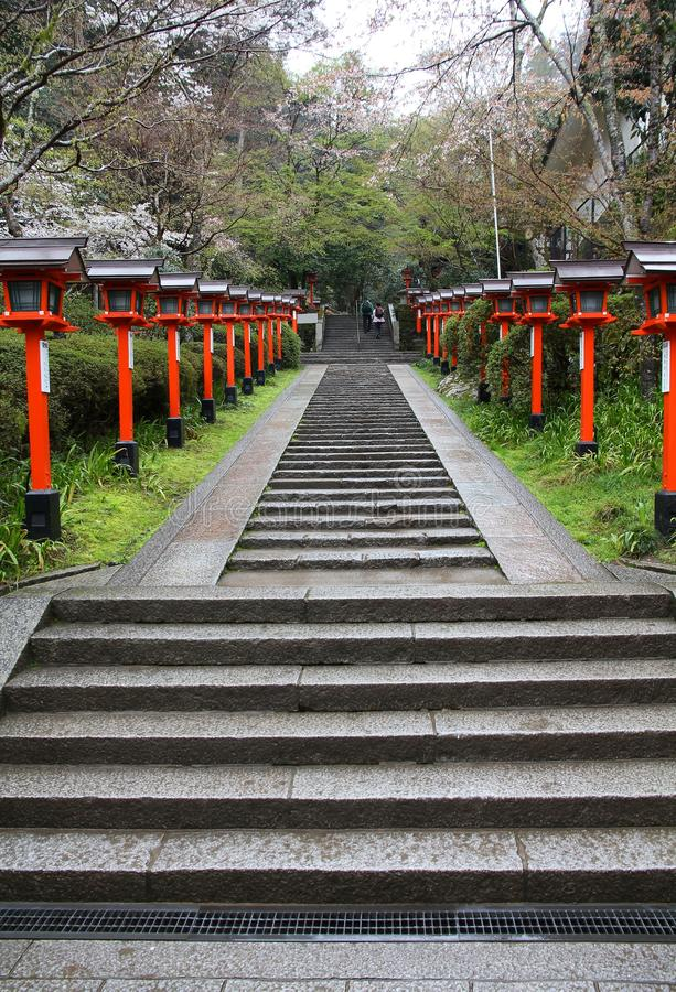 Kurama στοκ εικόνα με δικαίωμα ελεύθερης χρήσης