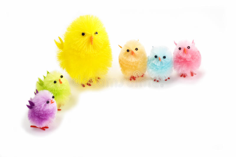 kurczątka Easter fotografia royalty free