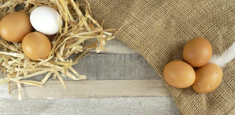 Kurczaków jajka w gniazdeczku z burlap nad drewnianym tłem fotografia stock