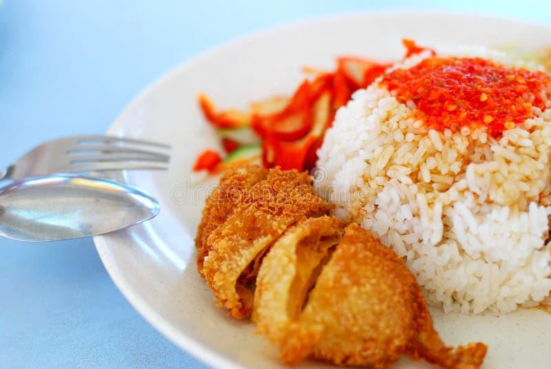 kurczaków azjatykci ryż projektują jarosza obrazy stock